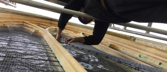 Church window guard renewal at St Mary the Virgin, Farnham